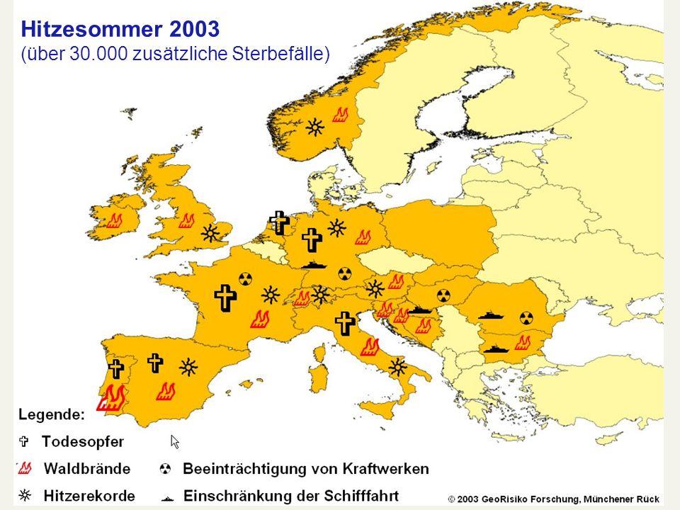Hitzesommer 2003 (über 30.000 zusätzliche Sterbefälle)
