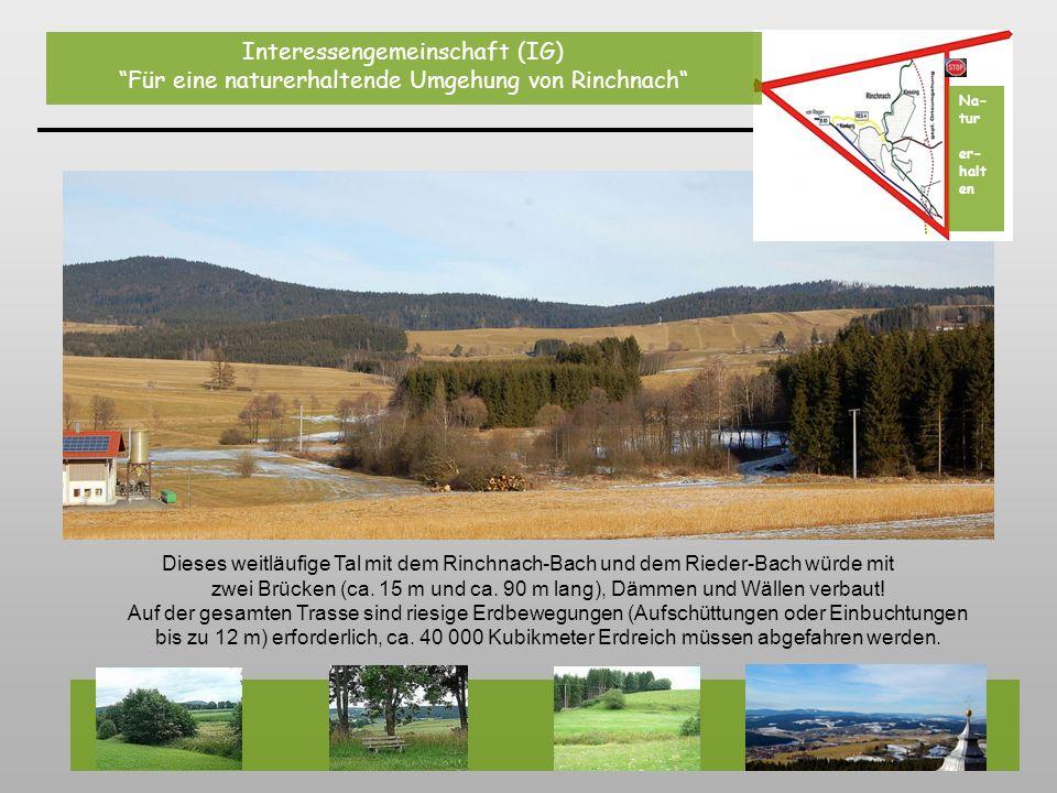 Dieses weitläufige Tal mit dem Rinchnach-Bach und dem Rieder-Bach würde mit zwei Brücken (ca. 15 m und ca. 90 m lang), Dämmen und Wällen verbaut! Auf