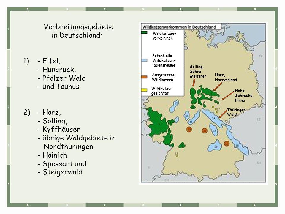 Verbreitungsgebiete in Deutschland: 1)- Eifel, - Hunsrück, - Pfälzer Wald - und Taunus 2)- Harz, - Solling, - Kyffhäuser - übrige Waldgebiete in Nordt