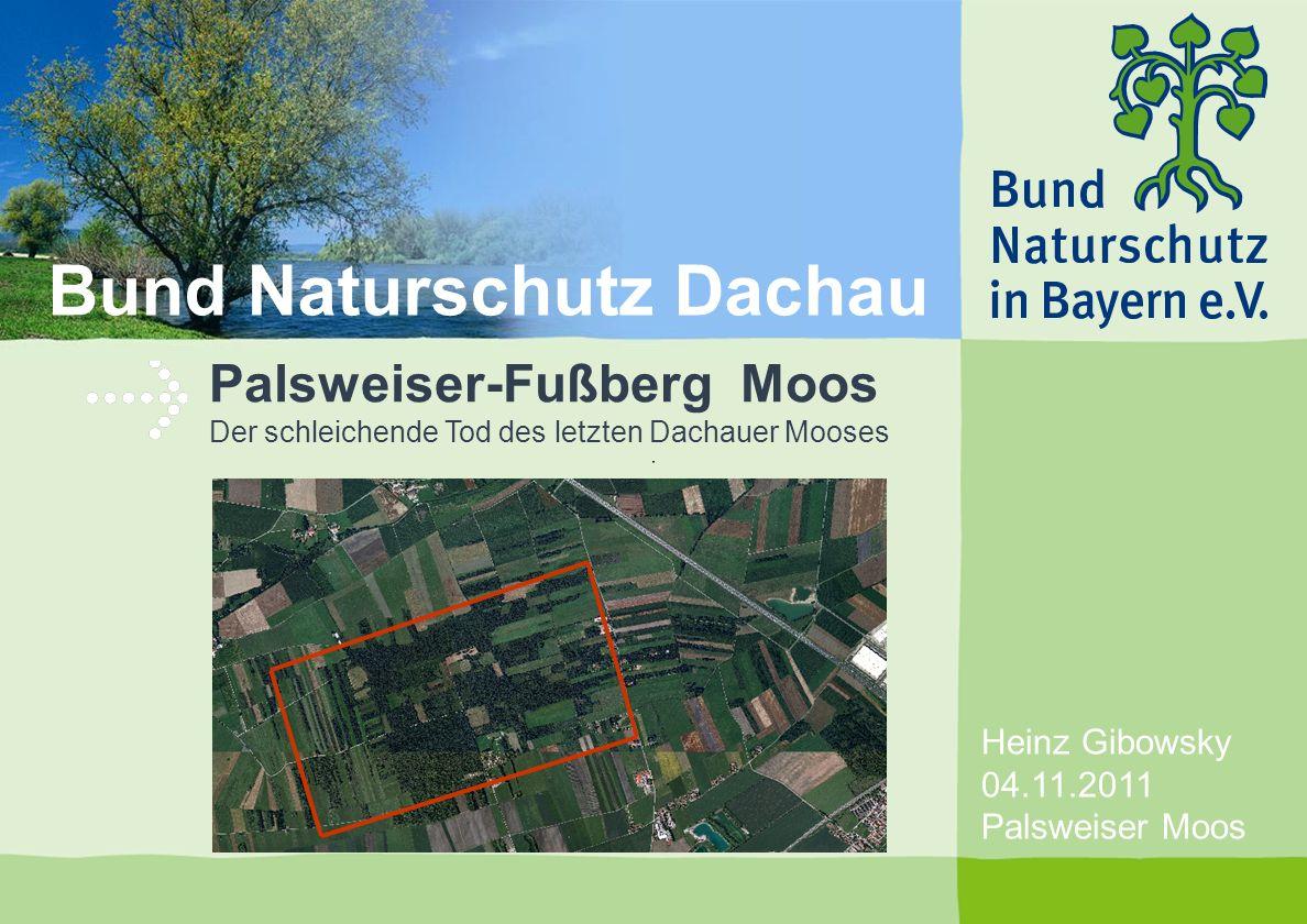 Heinz Gibowsky 04.11.2011 Palsweiser Moos Palsweiser-Fußberg Moos Der schleichende Tod des letzten Dachauer Mooses Bund Naturschutz Dachau