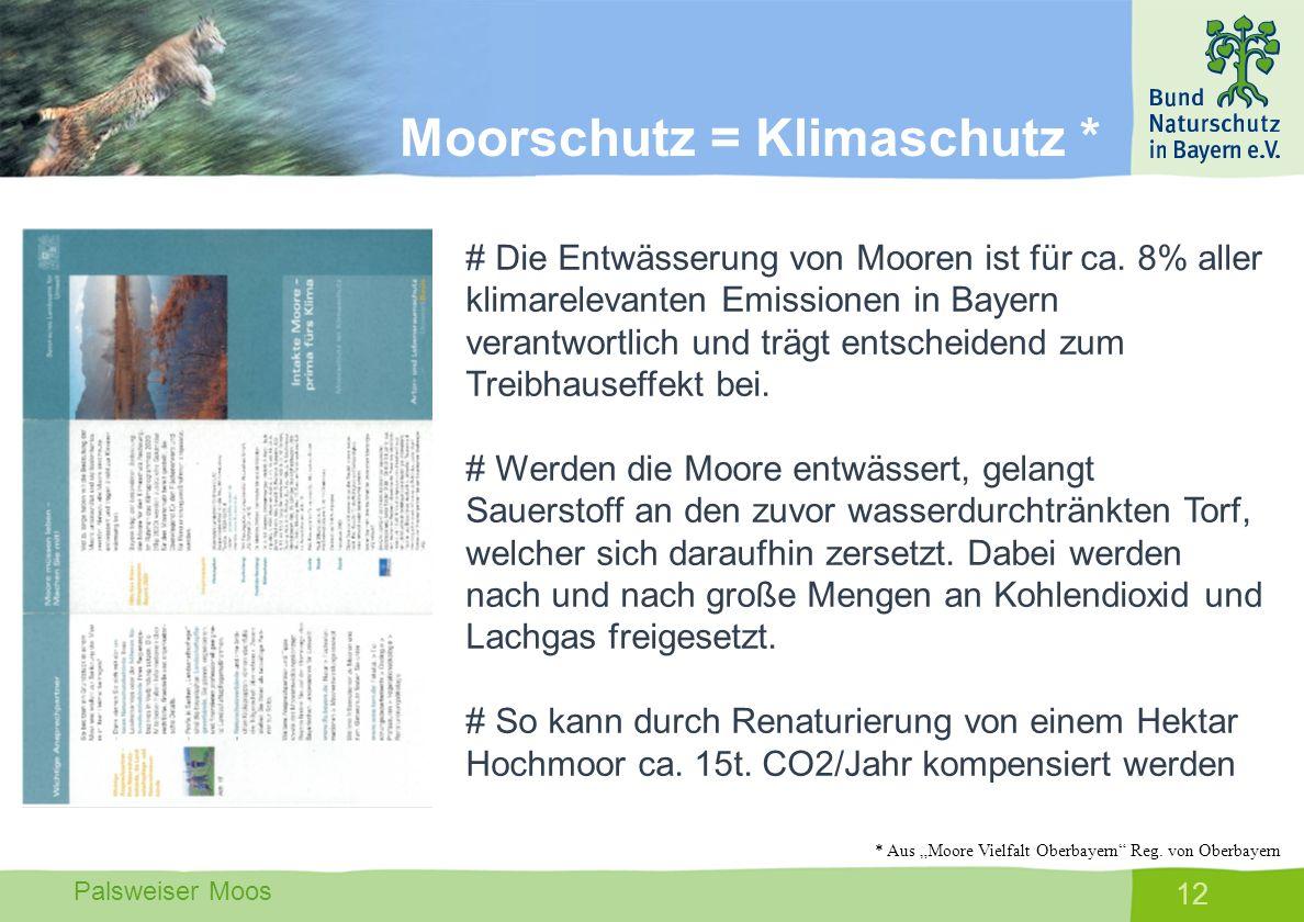Palsweiser Moos 12 # Die Entwässerung von Mooren ist für ca. 8% aller klimarelevanten Emissionen in Bayern verantwortlich und trägt entscheidend zum T