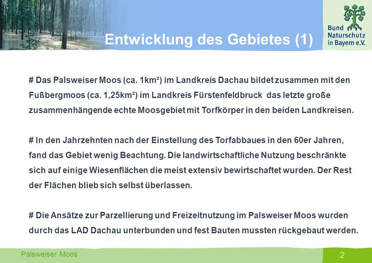 Palsweiser Moos 13 # Aufkauf von Flächen im Kernbereich und damit Kontrolle über die Nutzung (Gemeinde Bergkirchen und Maisach, LA DAH und FFB und BN) # Einbinden von Eigentümern deren Flächen ungenutzt sind.