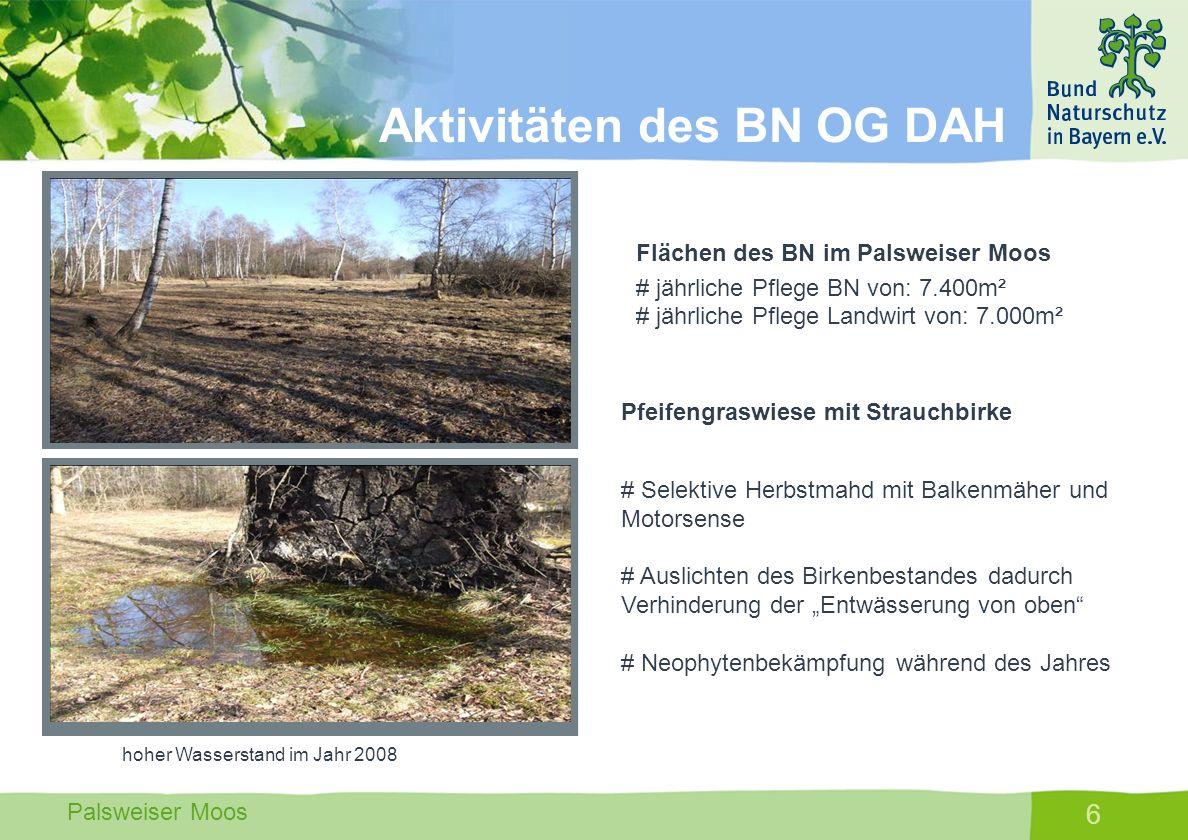 Palsweiser Moos 7 Grabenräumung 2008 Der Augraben der bisher das Oberflächenwasser abführte, wurde auf einer Länge von ca.