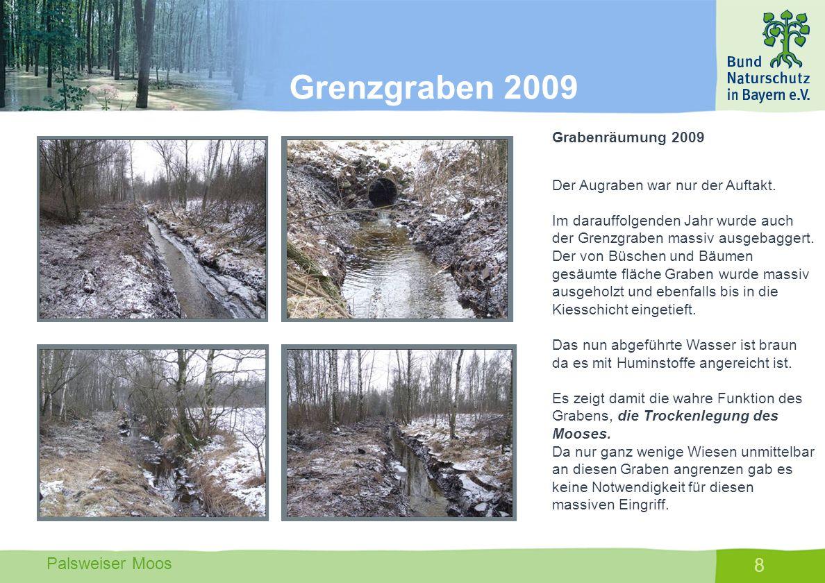 Palsweiser Moos 8 Grabenräumung 2009 Der Augraben war nur der Auftakt. Im darauffolgenden Jahr wurde auch der Grenzgraben massiv ausgebaggert. Der von