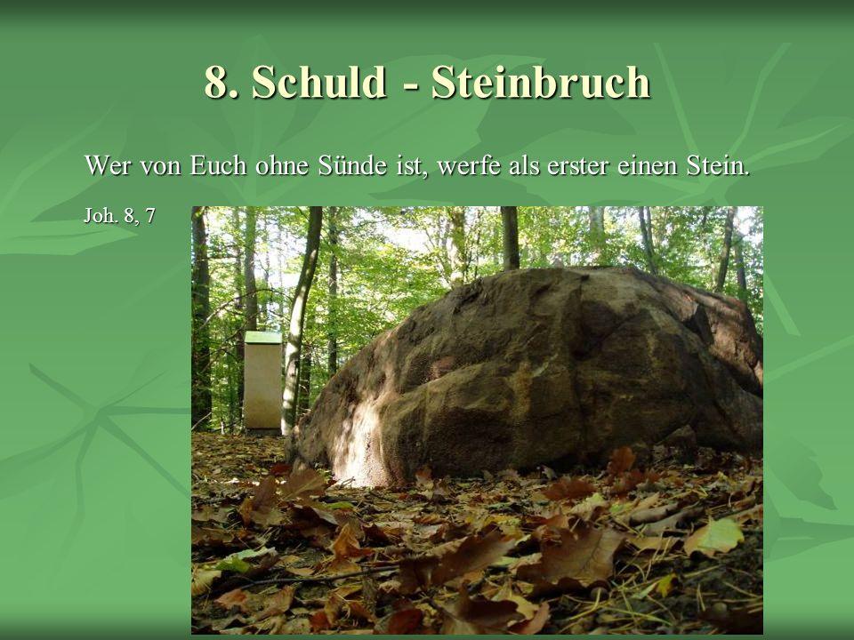 Schöpfungsweg 8. Schuld - Steinbruch Wer von Euch ohne Sünde ist, werfe als erster einen Stein. Joh. 8, 7
