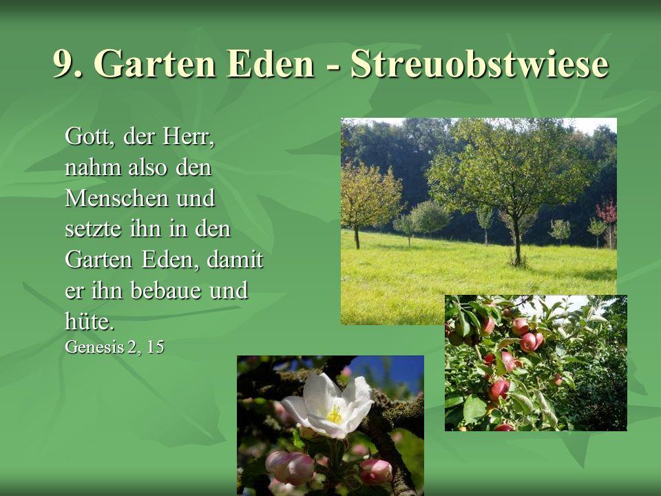 Schöpfungsweg 9. Garten Eden - Streuobstwiese Gott, der Herr, nahm also den Menschen und setzte ihn in den Garten Eden, damit er ihn bebaue und hüte.