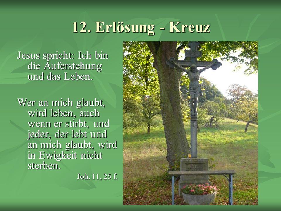 Schöpfungsweg 12. Erlösung - Kreuz Jesus spricht: Ich bin die Auferstehung und das Leben. Wer an mich glaubt, wird leben, auch wenn er stirbt, und jed
