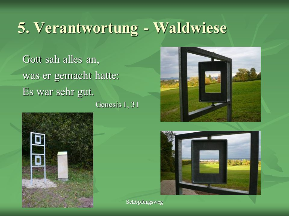 Schöpfungsweg 5. Verantwortung - Waldwiese Gott sah alles an, was er gemacht hatte: Es war sehr gut. Genesis 1, 31