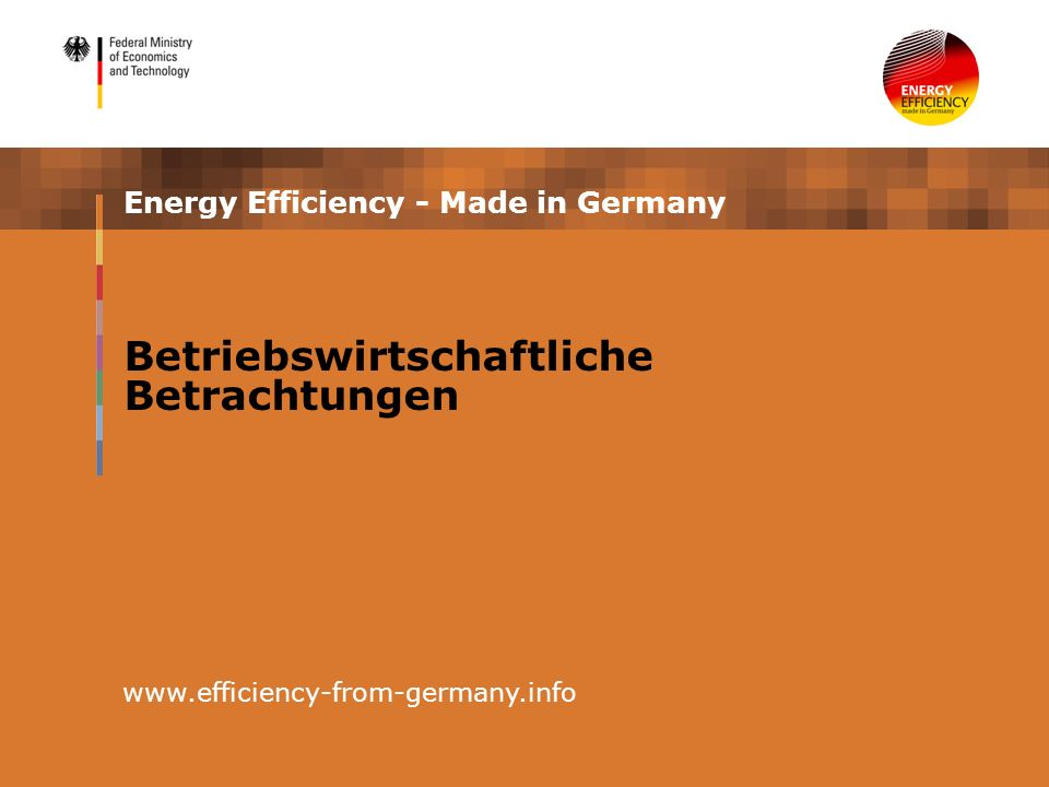 Energy Efficiency - Made in Germany www.efficiency-from-germany.info Betriebswirtschaftliche Betrachtungen