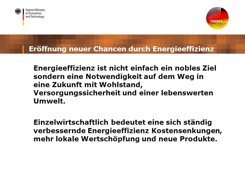 Eröffnung neuer Chancen durch Energieeffizienz Energieeffizienz ist nicht einfach ein nobles Ziel sondern eine Notwendigkeit auf dem Weg in eine Zukun