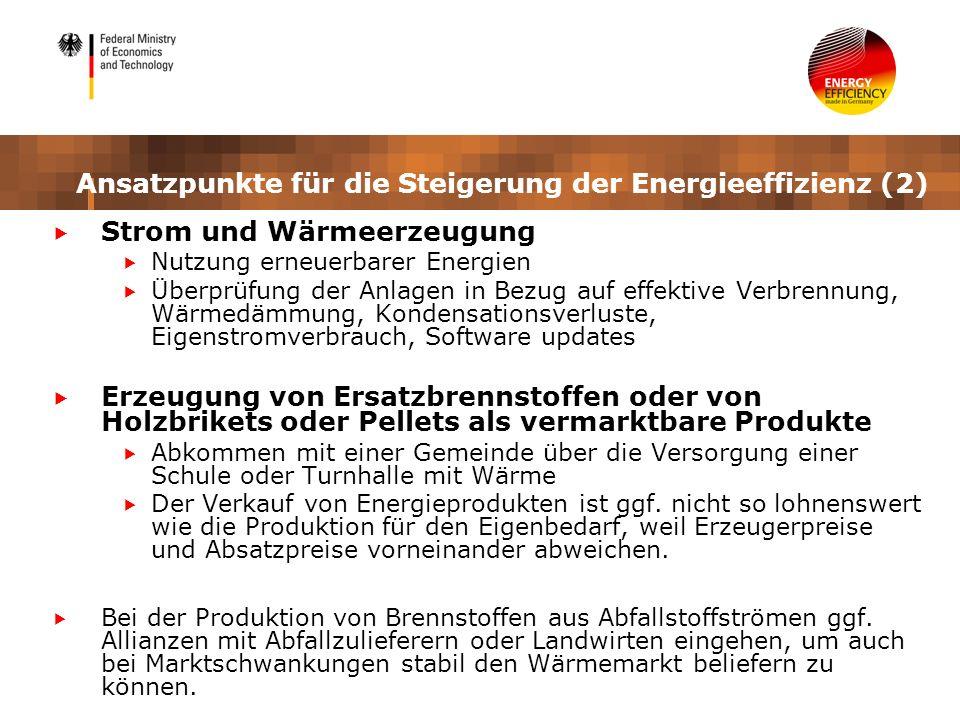 Ansatzpunkte für die Steigerung der Energieeffizienz (2) Strom und Wärmeerzeugung Nutzung erneuerbarer Energien Überprüfung der Anlagen in Bezug auf e