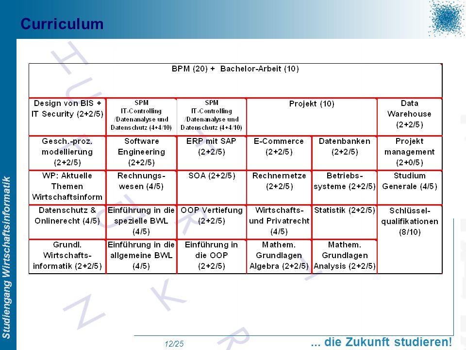 Prof. Dr. Swen Schneider, FHFFM, Overview Studiengang Wirtschaftsinformatik... die Zukunft studieren! 12/25 Curriculum