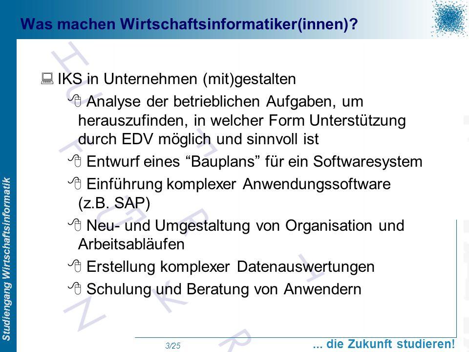 Prof. Dr. Swen Schneider, FHFFM, Overview Studiengang Wirtschaftsinformatik... die Zukunft studieren! 3/25 Was machen Wirtschaftsinformatiker(innen)?
