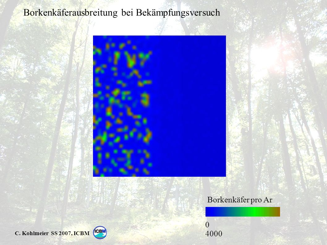 C. Kohlmeier SS 2007, ICBM 0 4000 Borkenkäfer pro Ar Borkenkäferausbreitung bei Bekämpfungsversuch