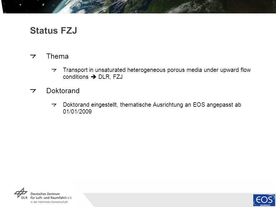 Institut für Methodik der Fernerkundung bzw. Deutsches Fernerkundungsdatenzentrum Folie 5 Status FZJ Thema Transport in unsaturated heterogeneous poro