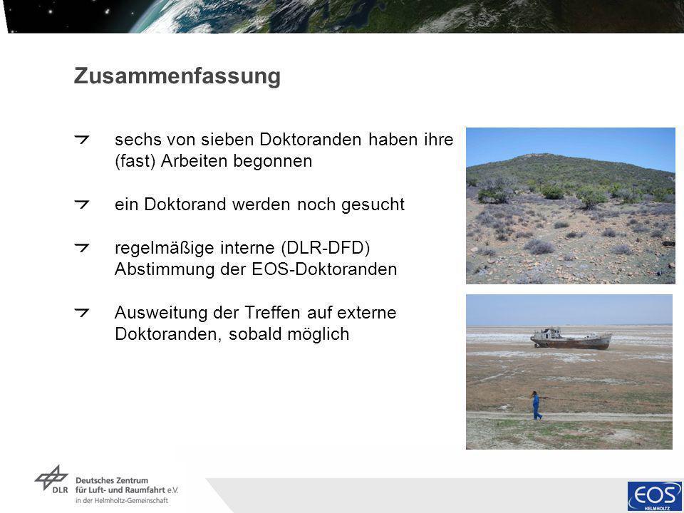 Institut für Methodik der Fernerkundung bzw. Deutsches Fernerkundungsdatenzentrum Folie 6 Zusammenfassung sechs von sieben Doktoranden haben ihre (fas