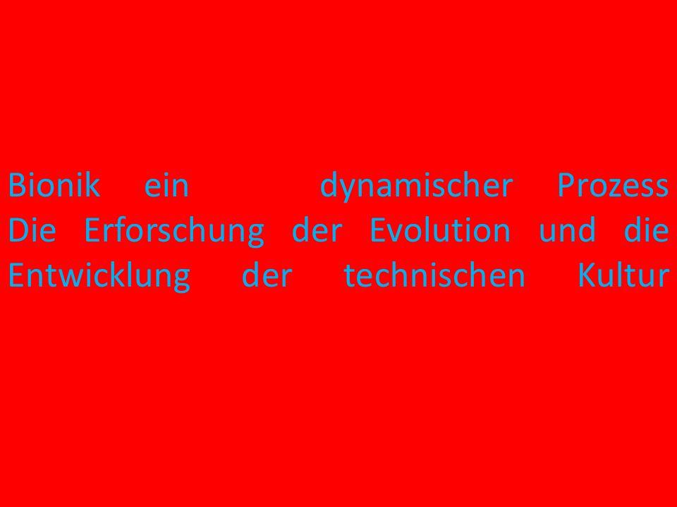 Rematerialisierung- Second Life Re-Growing- Nachwachsend Re- Cycelt- Kreislaufsysteme Re-used- Wiederverwendet