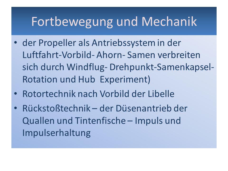 Fortbewegung und Mechanik der Propeller als Antriebssystem in der Luftfahrt-Vorbild- Ahorn- Samen verbreiten sich durch Windflug- Drehpunkt-Samenkapse