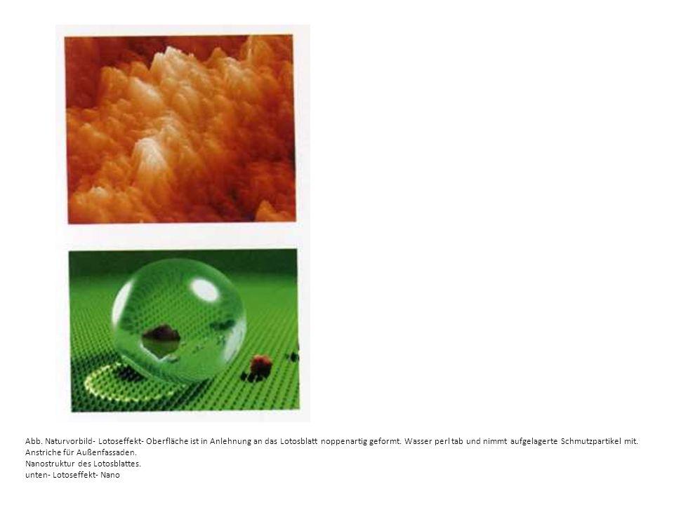 Abb. Naturvorbild- Lotoseffekt- Oberfläche ist in Anlehnung an das Lotosblatt noppenartig geformt. Wasser perl tab und nimmt aufgelagerte Schmutzparti