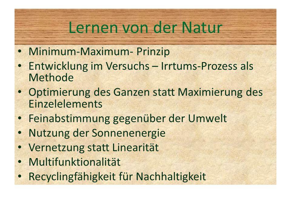 Lernen von der Natur Minimum-Maximum- Prinzip Entwicklung im Versuchs – Irrtums-Prozess als Methode Optimierung des Ganzen statt Maximierung des Einze