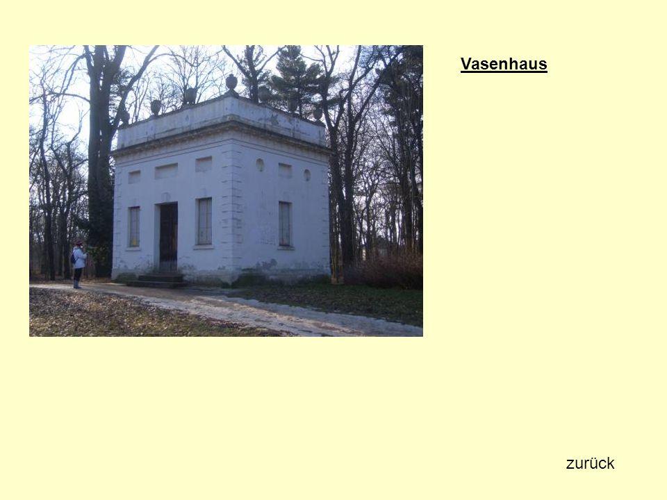 Vasenhaus zurück
