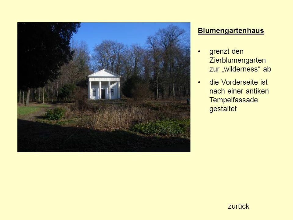 Sommerlinde (Tilia platyphyllos) Standort: Georgium Baumnummer: 1600 Höhe: 23 m Stammumfang: 1,90 m Kronendurchmesser: 10,80 m Alter: ca.