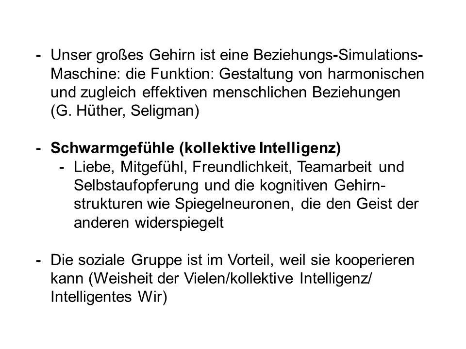-Unser großes Gehirn ist eine Beziehungs-Simulations- Maschine: die Funktion: Gestaltung von harmonischen und zugleich effektiven menschlichen Beziehungen (G.
