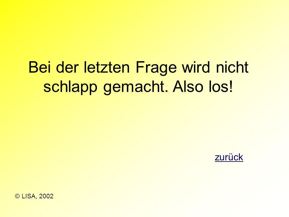 Auf zum Schlussspurt. Mit deinem Wissen schaffst du es bestimmt. weiter © LISA, 2002