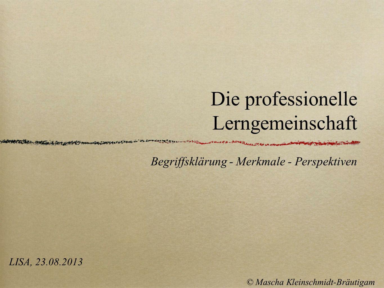Die professionelle Lerngemeinschaft Begriffsklärung - Merkmale - Perspektiven LISA, 23.08.2013 © Mascha Kleinschmidt-Bräutigam
