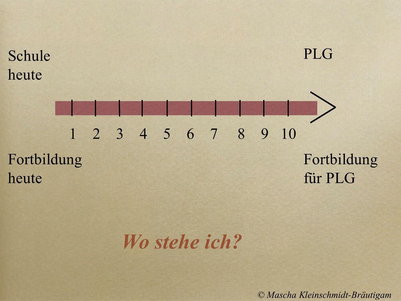 Schule heute Fortbildung heute Fortbildung für PLG PLG Wo stehe ich? 1 2 3 4 5 6 7 8 9 10 © Mascha Kleinschmidt-Bräutigam