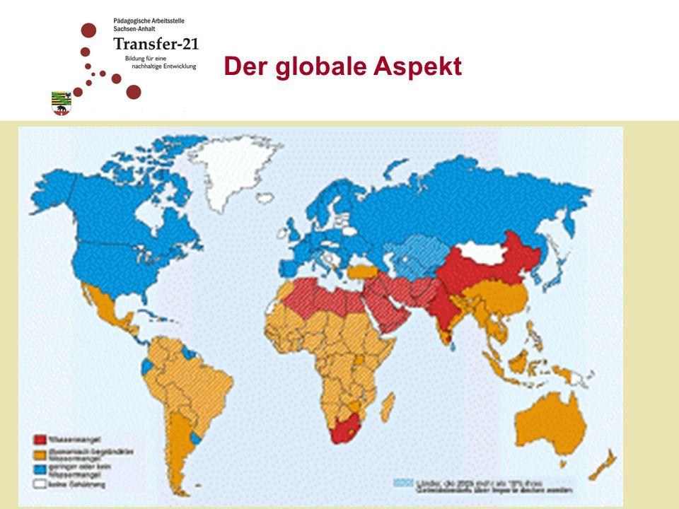 Der globale Aspekt