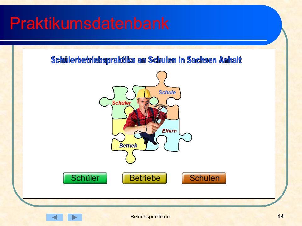 Betriebspraktikum14 Praktikumsdatenbank