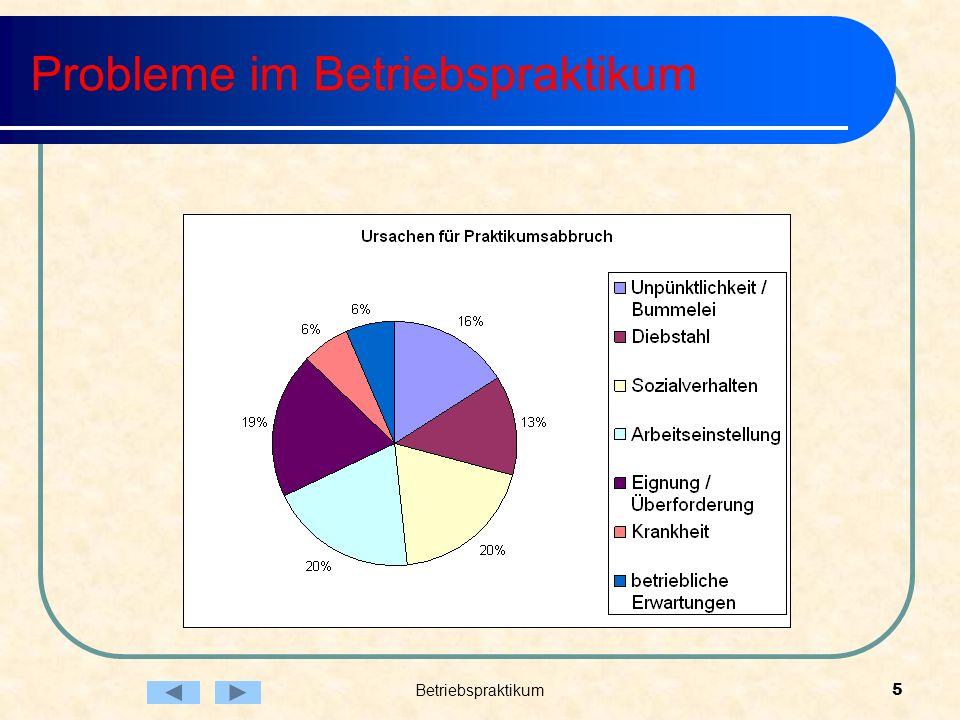 Betriebspraktikum5 Probleme im Betriebspraktikum