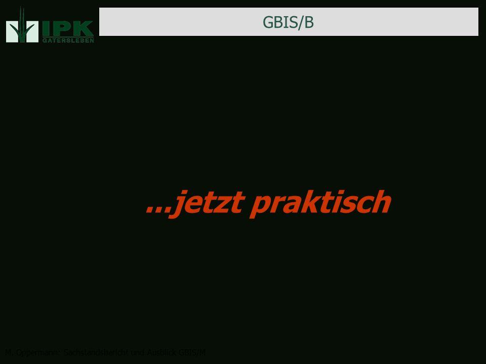 GBIS/B M. Oppermann: Sachstandsbericht und Ausblick GBIS/M...jetzt praktisch