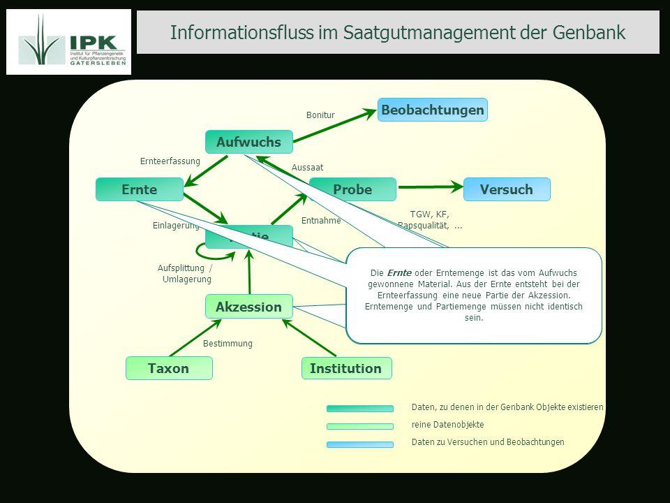 Informationsfluss im Saatgutmanagement der Genbank TGW, KF, Rapsqualität,... Einlagerung Ernteerfassung Entnahme Aussaat Aufsplittung / Umlagerung Bes
