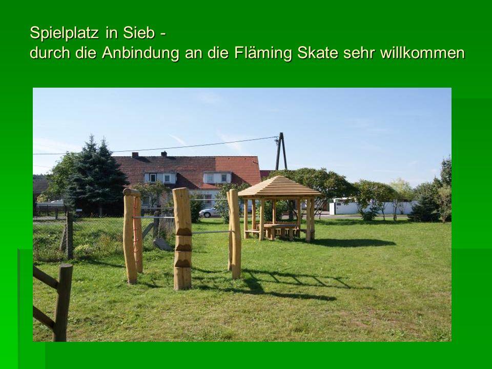Spielplatz in Sieb - durch die Anbindung an die Fläming Skate sehr willkommen