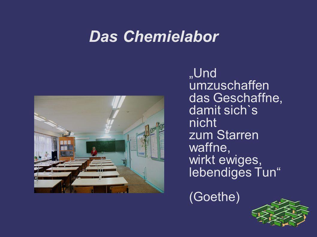 Das Chemielabor Und umzuschaffen das Geschaffne, damit sich`s nicht zum Starren waffne, wirkt ewiges, lebendiges Tun (Goethe)