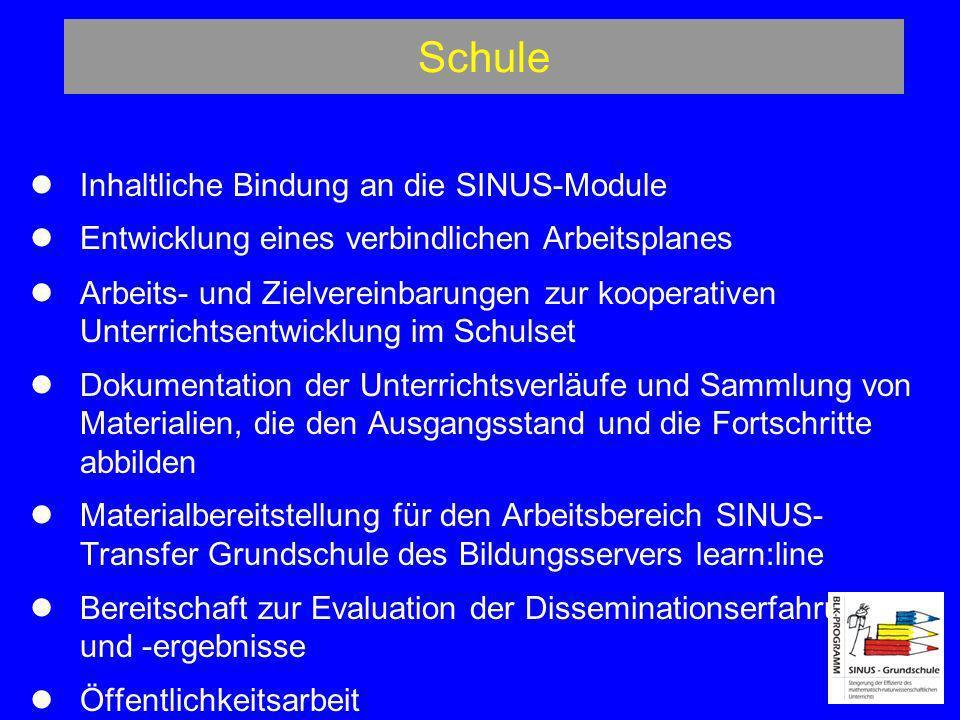 Schule Inhaltliche Bindung an die SINUS-Module Entwicklung eines verbindlichen Arbeitsplanes Arbeits- und Zielvereinbarungen zur kooperativen Unterric