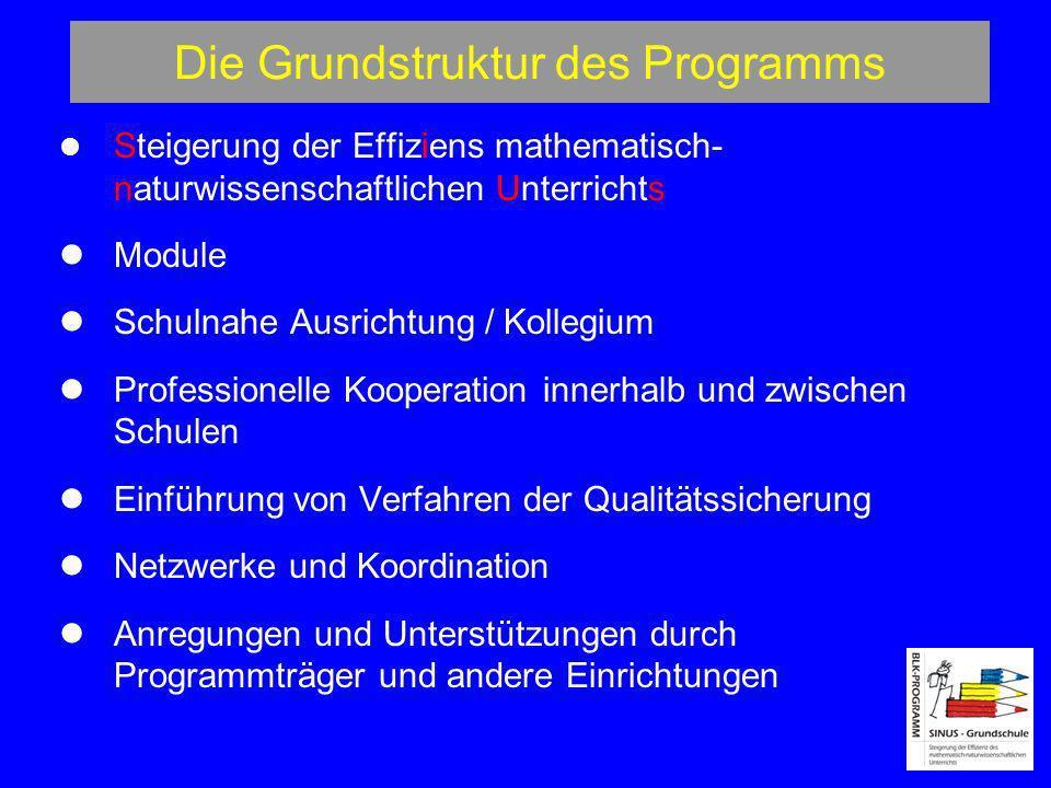 Die Grundstruktur des Programms Steigerung der Effiziens mathematisch- naturwissenschaftlichen Unterrichts Module Schulnahe Ausrichtung / Kollegium Pr
