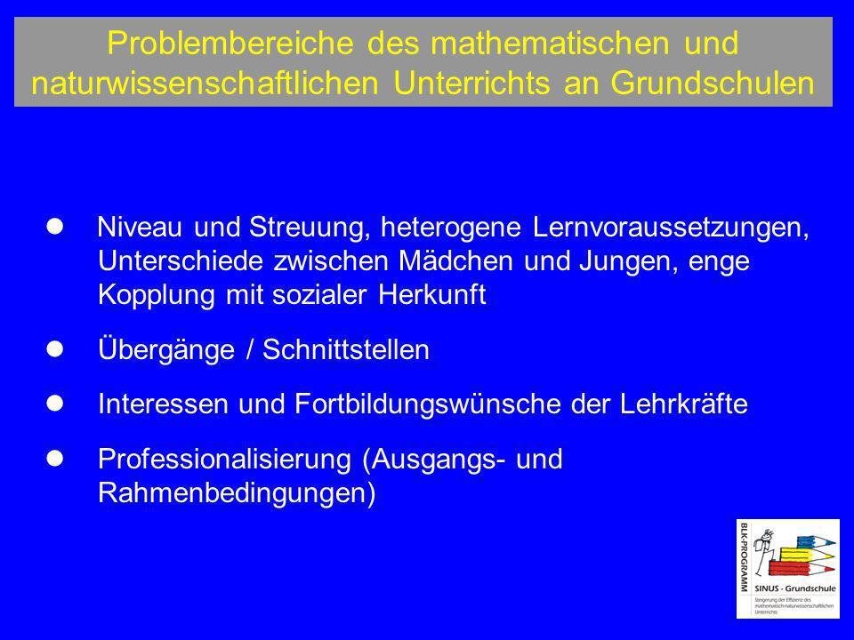 Problembereiche des mathematischen und naturwissenschaftlichen Unterrichts an Grundschulen Niveau und Streuung, heterogene Lernvoraussetzungen, Unters