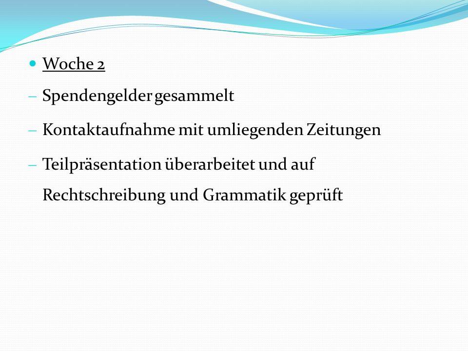 - Übernahme der Sachspenden von Real Rostock - Eine zweite Gruppe übernahm die Sachspenden bei Spielemaxx - Telefonische Rückmeldung vom Hagebaumarkt Güstrow und Famila Teterow