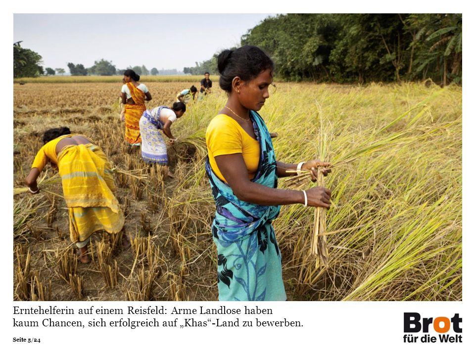 Seite 5/24 Erntehelferin auf einem Reisfeld: Arme Landlose haben kaum Chancen, sich erfolgreich auf Khas-Land zu bewerben.