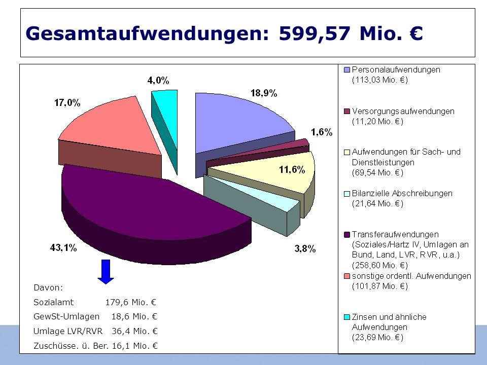 Gesamtaufwendungen: 599,57 Mio. Davon: Sozialamt 179,6 Mio.
