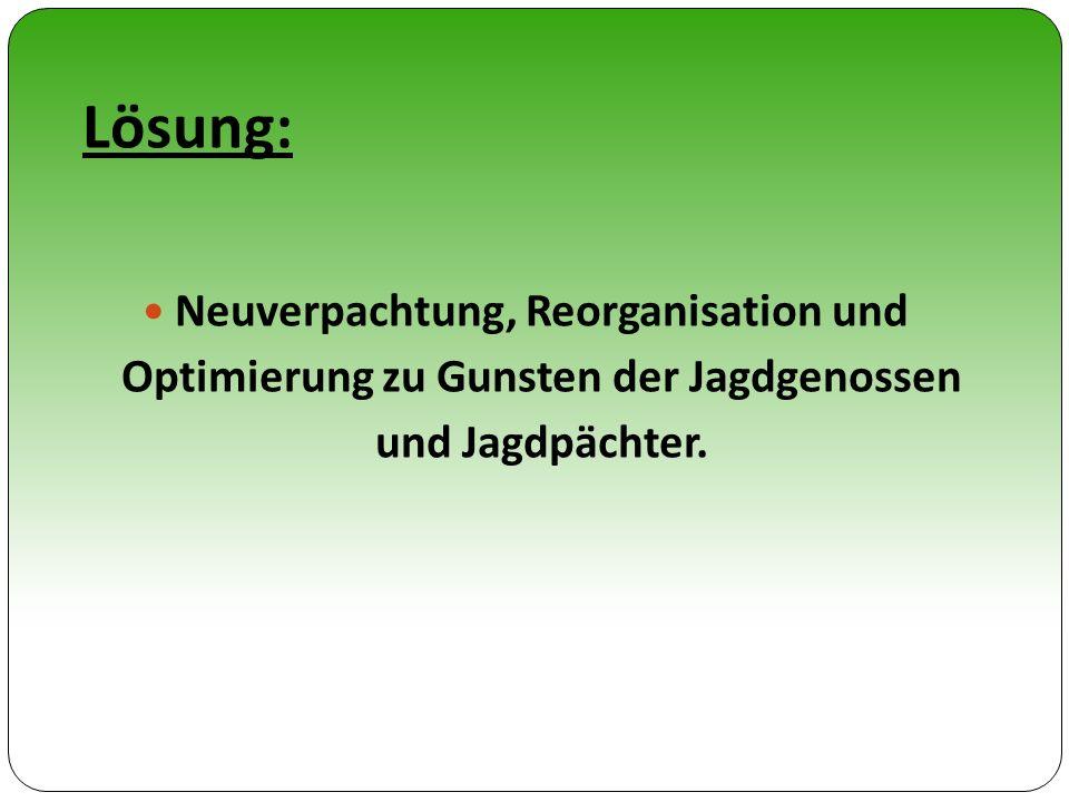 Lösung: Neuverpachtung, Reorganisation und Optimierung zu Gunsten der Jagdgenossen und Jagdpächter.