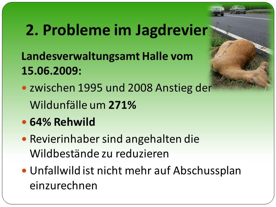 2. Probleme im Jagdrevier Landesverwaltungsamt Halle vom 15.06.2009: zwischen 1995 und 2008 Anstieg der Wildunfälle um 271% 64% Rehwild Revierinhaber