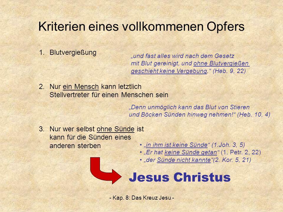 - Kap. 8: Das Kreuz Jesu - Kriterien eines vollkommenen Opfers 1.Blutvergießung 2.Nur ein Mensch kann letztlich Stellvertreter für einen Menschen sein