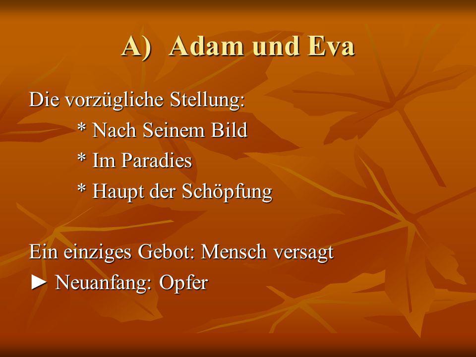 A) Adam und Eva Die vorzügliche Stellung: * Nach Seinem Bild * Im Paradies * Haupt der Schöpfung Ein einziges Gebot: Mensch versagt Neuanfang: Opfer Neuanfang: Opfer