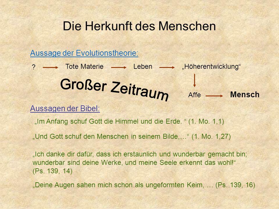 Die Herkunft des Menschen Aussage der Evolutionstheorie: ? Tote MaterieLebenHöherentwicklung Affe Mensch Aussagen der Bibel: Und Gott schuf den Mensch