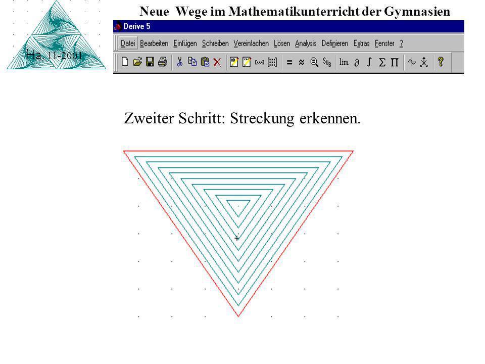 Neue Wege im Mathematikunterricht der Gymnasien Ha, 11-2001 Erster Schritt: Muster selektieren.