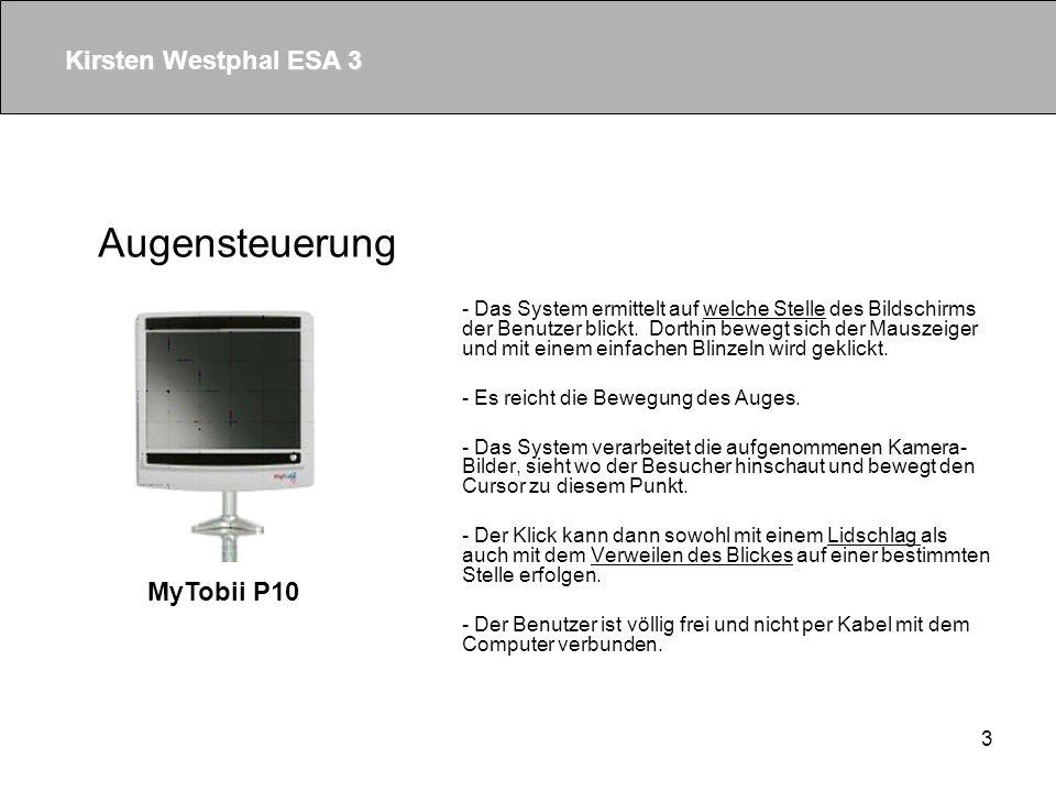 3 - Das System ermittelt auf welche Stelle des Bildschirms der Benutzer blickt.